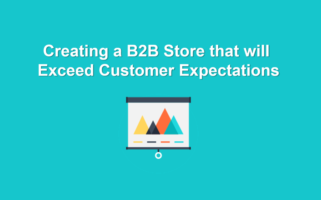 Creating a B2B Store that will Exceed Customer Expectations