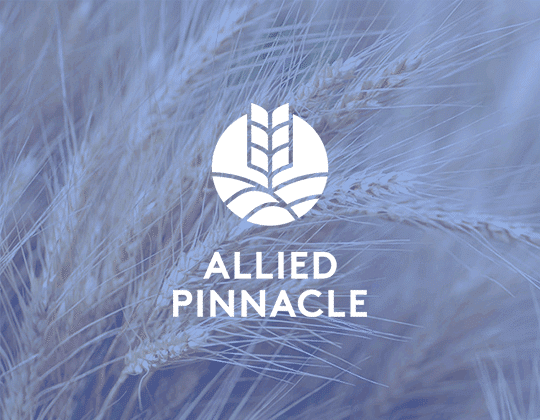 Allied Pinnacle Logo with Wheat in background